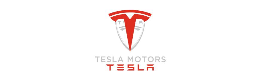 Історія Tesla